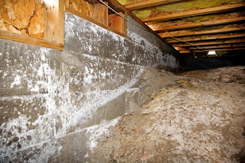 Plamondon Basements and Crawl Spaces